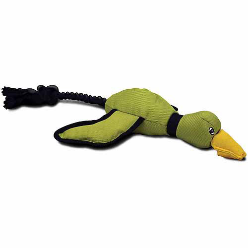 Hyper Pet Mini Flying Duck Dog Toy, Green