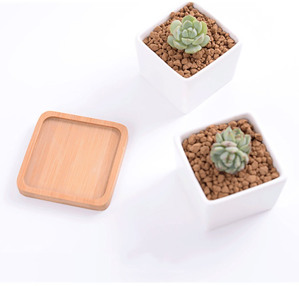 Mr. Garden 3.3-Inch Ceramic Planter Pots Square Planters with Removable Bamboo Tray, Succulent and Cactus Plants Pots, White