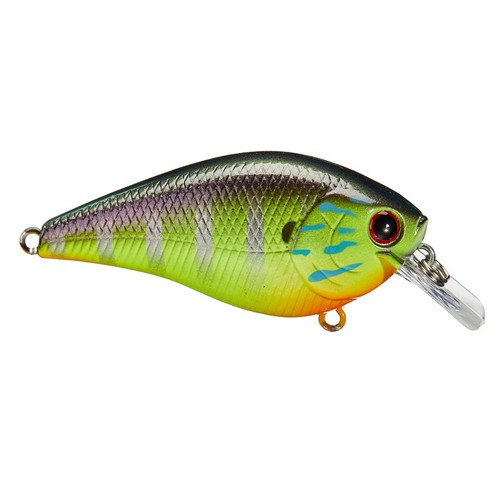 """Lucky Craft Pointer 1.5 Squarebill /""""Chartreuse Perch/"""""""
