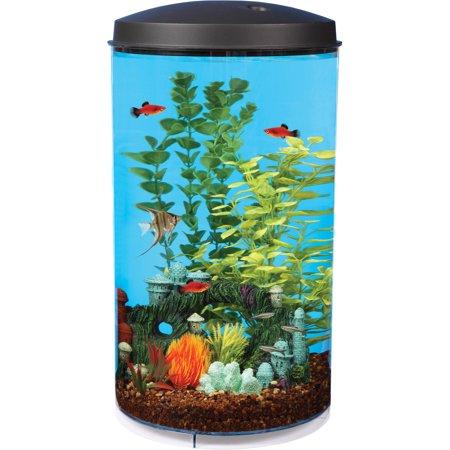 Hawkeye 6 gallon aquarium kit with filter and led lighting for 20 gallon fish tank walmart
