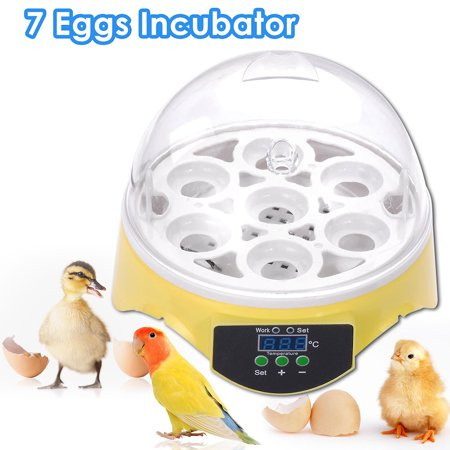 Yescom Mini Digital Transparent 7 Egg Incubator Clear Chicken Poultry Hatcher w/ CE Certificated