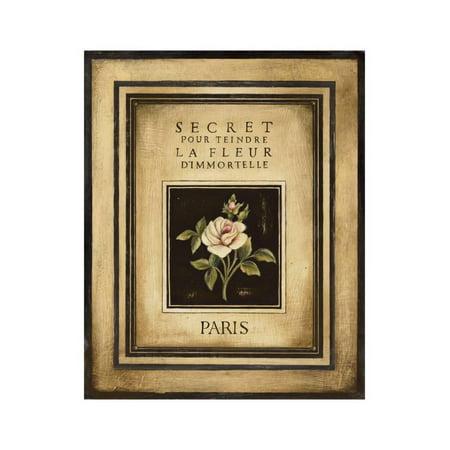 Les Fleurs de Paris I Print Wall Art By Kimberly Poloson - Fleur De Lis Plaque