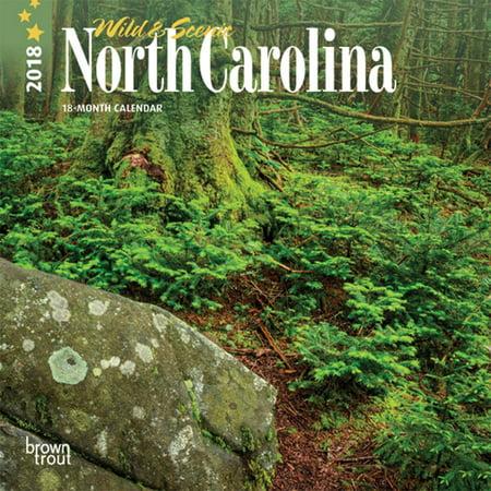 North Carolina, Wild & Scenic 2018 7 x 7 Inch Monthly Mini Wall Calendar (Mini Wall Calendar Kids)