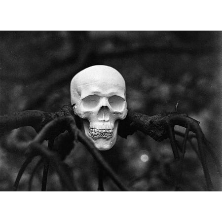 LAMINATED POSTER Skull Dead Spooky Scary Tree Halloween Horror Poster Print 11 x 17](Spooky Halloween Posters)