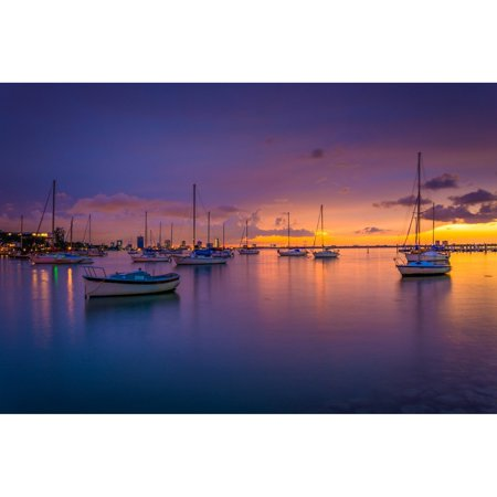 NOIR Gallery Biscayne Bay Sunset in Miami on Aluminum (Spirit Halloween Sunset Miami)