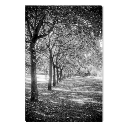 Startonight Canvas Wall Art Black and White Abstract Light and Trees Nature Landscape, Dual View Surprise Artwork Modern Framed Ready to Hang Wall Art 100% Original Art Painting 23.62 X 35.43 inch