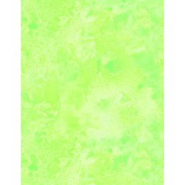 """Wilmington Prints Essentials Quilt Backing 108"""" Lime Cosmos"""