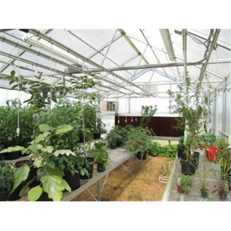 Image of Riverstone Industries RSI R16248-P 24 Ft. Wallace Educational Greenhouse Kit, 8 Ft. Walls