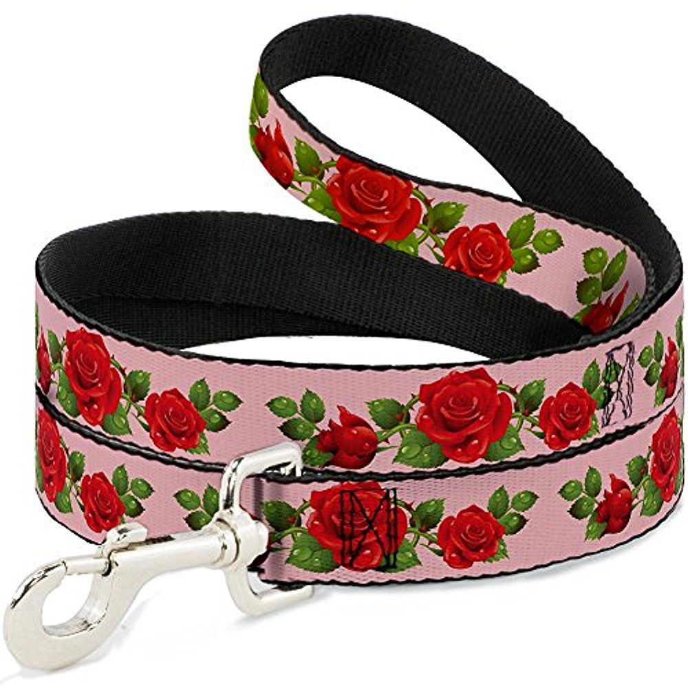 Buckle Down Buckle-Down Pet Dog or Cat Leash