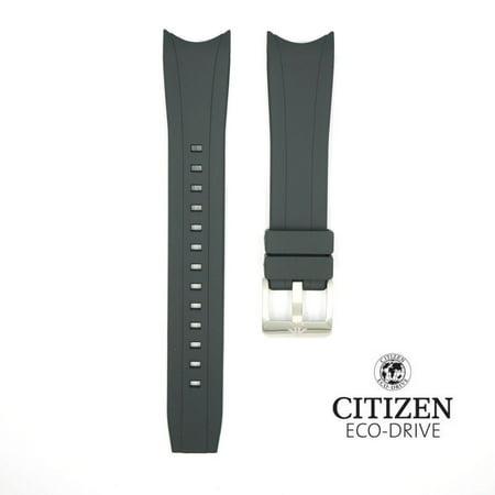 Citizen Aqualand 22mm Rubber Watch Band (Aqualand Citizen Watch)