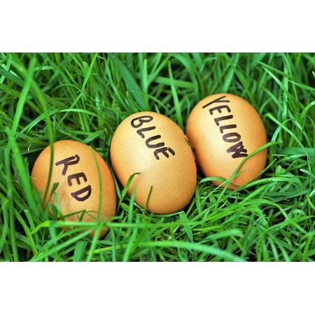 Framed Art for Your Wall Easter Eggs Easter Color Eggs Eggs Joke 10x13 Frame