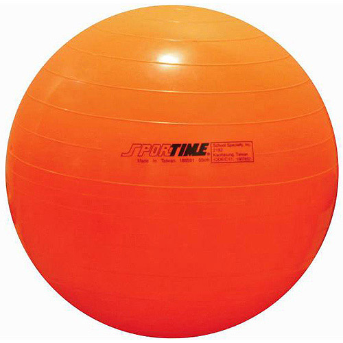Sportime Therapy and Exercise Ball