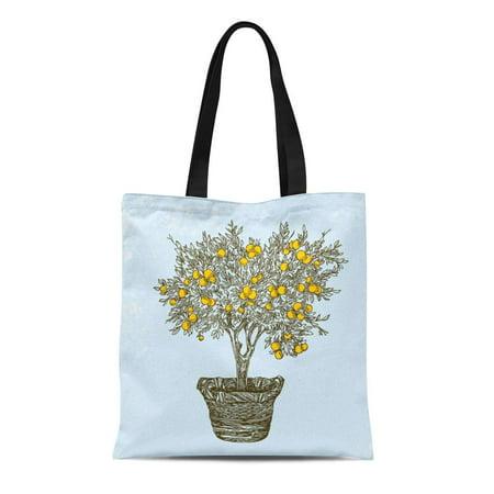 ASHLEIGH Canvas Tote Bag Green Fruit Orange Tree in Basket Vintage Mandarin Farm Reusable Shoulder Grocery Shopping Bags Handbag