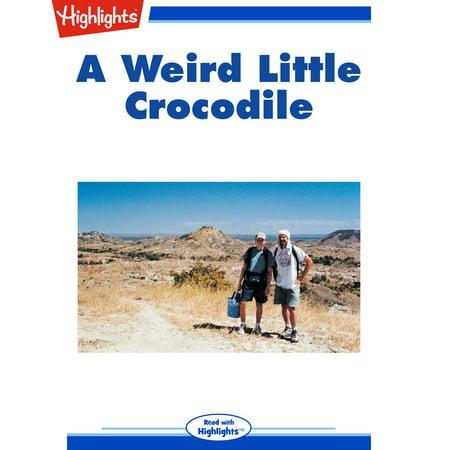 Weird Little Crocodile, A - Audiobook