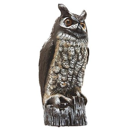 OW6 Gardeneer By Natural Enemy Scarecrow Great Horned Owl, Life-like Great Horned Owl helps protect gardens, fruit, and vegetables from birds and.., By Dalen