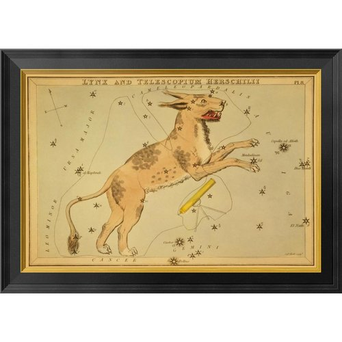 Global Gallery Lynx and Telescopium Herschilii, 1825 by Jehoshaphat Aspin Framed Graphic Art on Canvas
