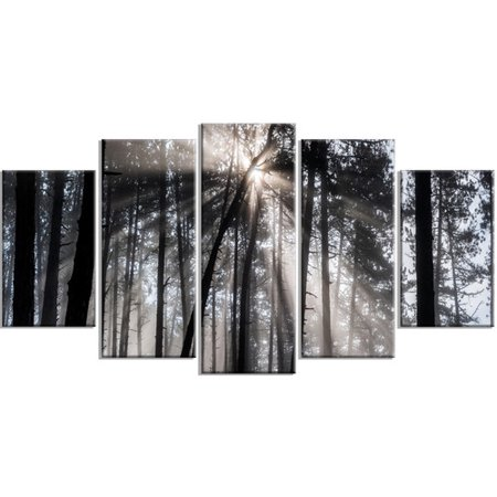 Design art sunbeams through black white forest 5 piece wall art on wrapped canvas