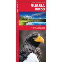 Russia Birds : A Folding Pocket Guide to Familiar Species