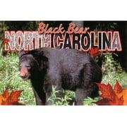 Jenkins North Carolina Postcard- Black Bear (pack Of 700)