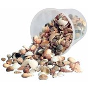 Hygloss, Assorted Shape Bucket O Shells, Assorted Sizes, Natural White, 16 oz