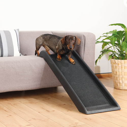 Archie & Oscar Galen Safety 39'' Pet Ramp
