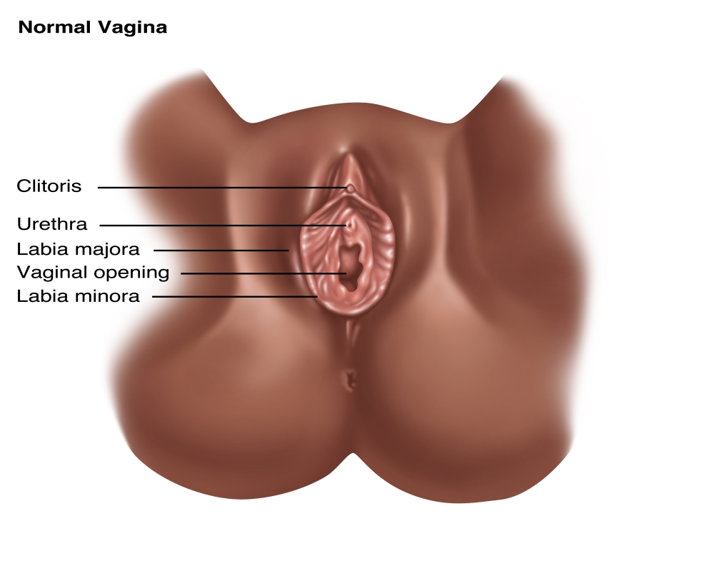 Normal vaginal delivery
