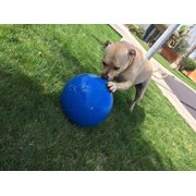 1 Virtually Indestructible Best Ball for Dogs, 10-inch(COLOR MAY VARY)