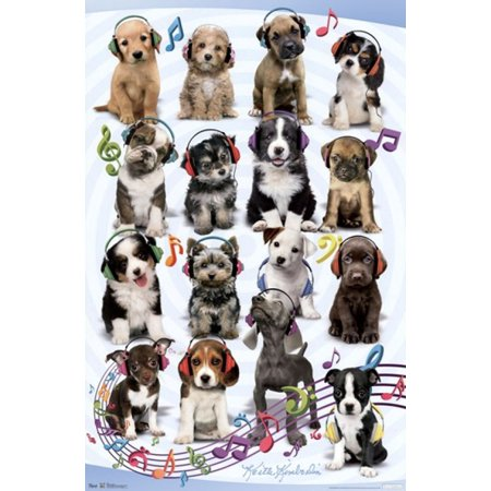Puppy - Headphones Poster - Puppy Posters
