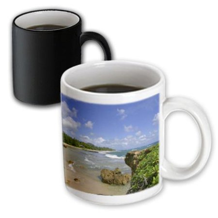 3dRose Gateway Arch, St Louis, Mississippi River, Missouri - US26 CHA0012 - Chuck Haney, Magic Transforming Mug, 11oz