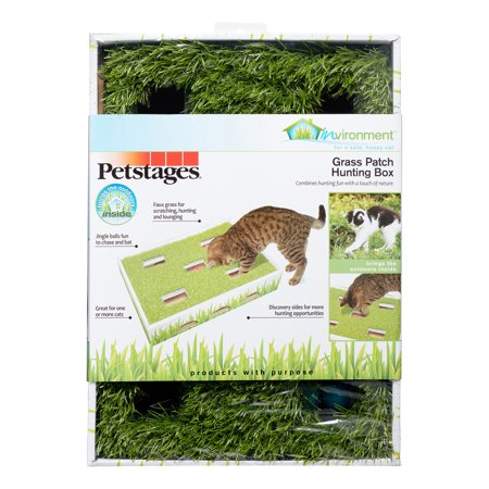 Petstages Grass Patch Hunting and Play Box Ball Cat Toy