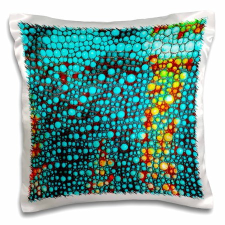 Lizard Pillow (3dRose Rainbow Panther Chameleon, Lizard in Madagascar - NA02 DNO0838 - David Northcott - Pillow Case, 16 by 16-inch )
