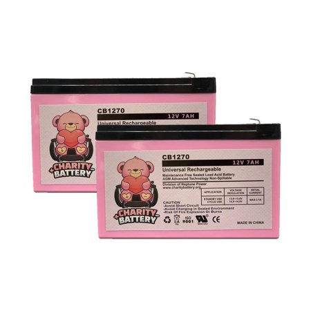 Schwinn Mini-E 12V 7Ah Replacement Electric Scooter SLA battery by Charity Battery - 2 pack
