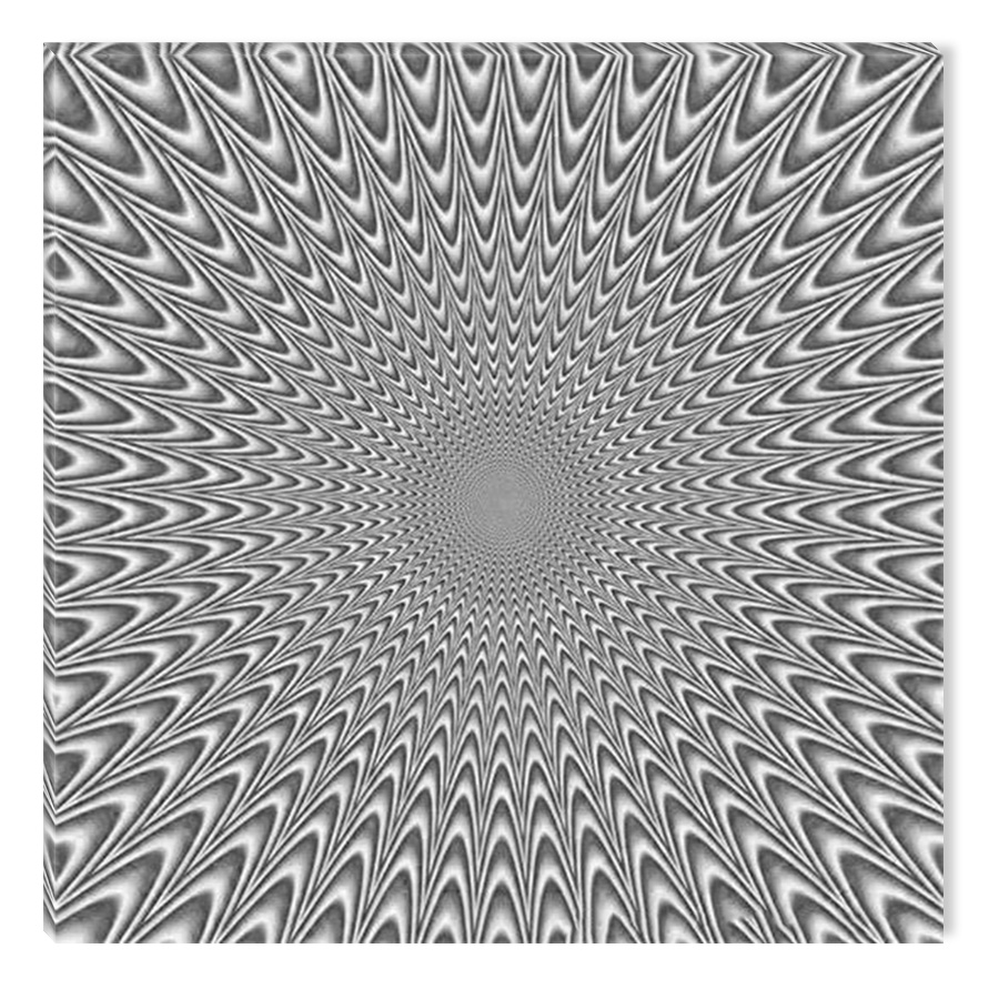 Startonight canvas wall art black and white abstract hypnotic circles dual view surprise artwork modern