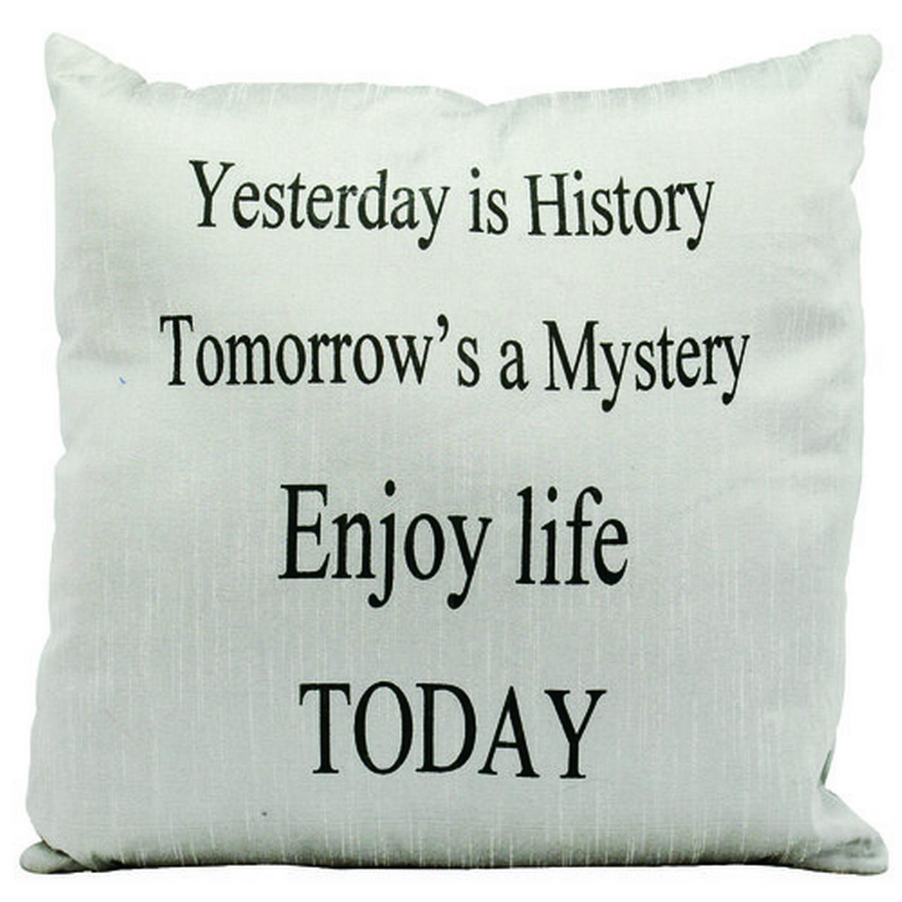 """Nourison Life Styles 'Yesterday is History' Throw Pillow, Silver, 18"""" x 18"""""""