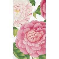 Caspari 3 Ply Paper Guest Towel Camellias 15 Count 13080G