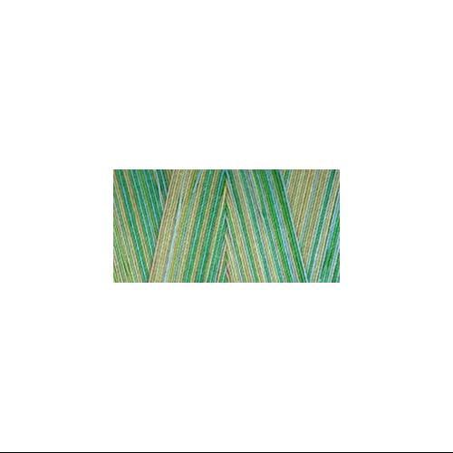 Star Mercerized Cotton Thread Variegated 1,200yd-Seedlings