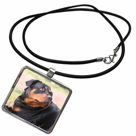3dRose Rottweiler - Necklace with Pendant (ncl_4370_1)