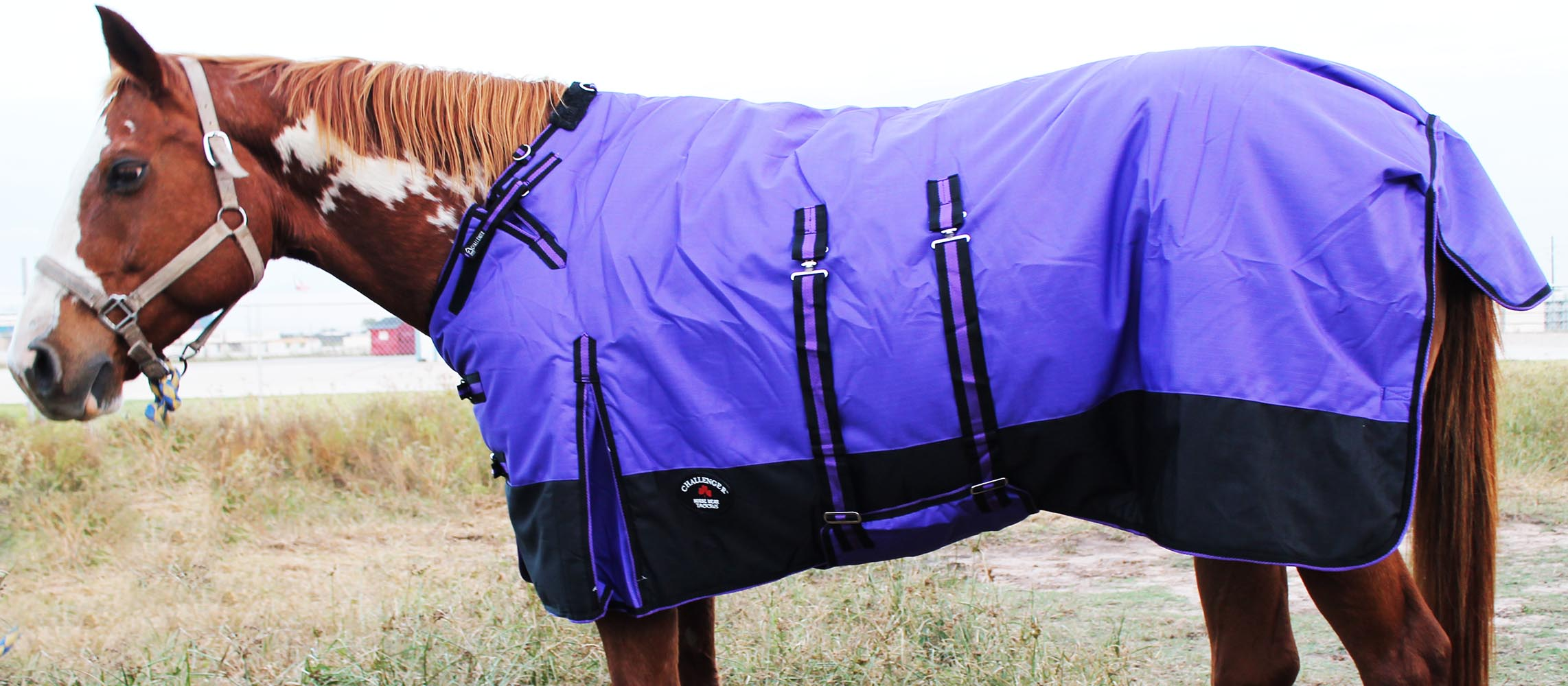 1200D Turnout Waterproof Horse Tough WINTER BLANKET HEAVY BellyBand by