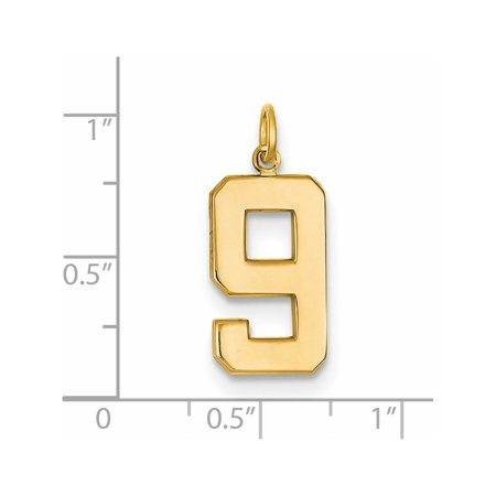 14k Yellow Gold y Casted Large Polished Number 9 (10x25mm) Pendant / Charm - image 1 of 2