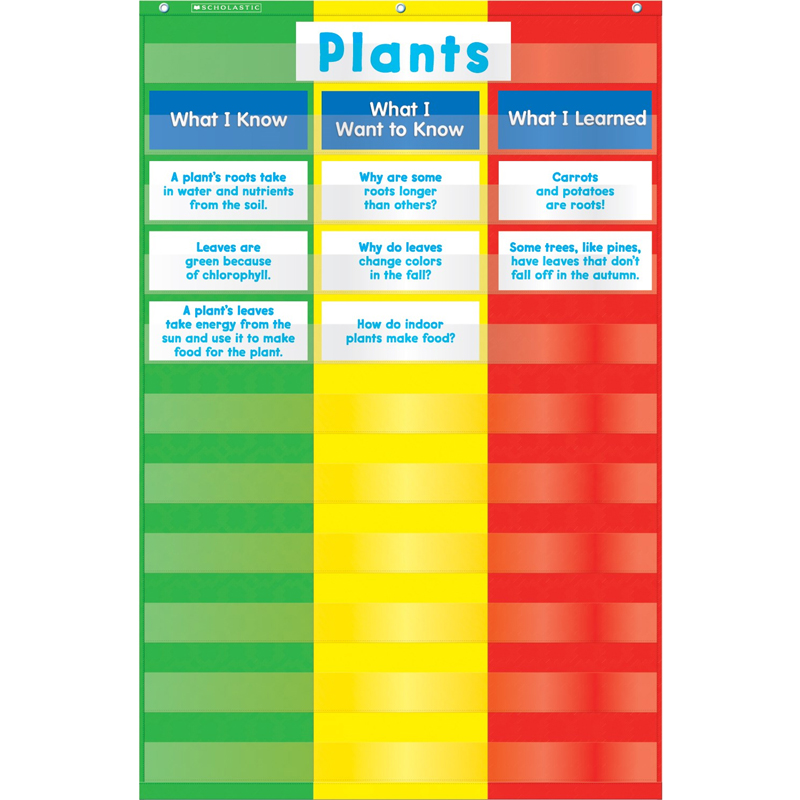 3 Column Chart Pocket Chart by SCHOLASTIC TEACHING RESOURCES