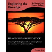 Heaven On A Barbed Stick - eBook