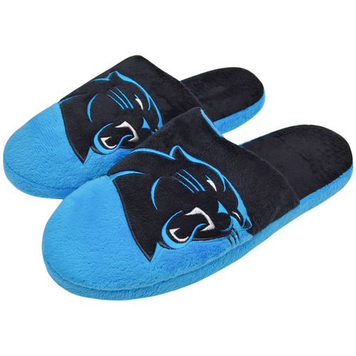 Nfl Carpanther Cb Slide Slp