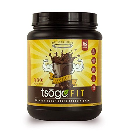 Sox Fiber - Tsogo Fit Protein Powder w/ 20 Grams of Plant Based Protein/Serving, Rich Chocolate Flavor, Soy, Gluten and Dairy Free, High Fiber, Low Carb, 160 Calories/Serving (1 Tub, 20 Servings, 29.6oz | 840g)