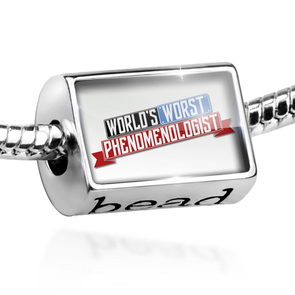 Bead Funny Worlds worst Phenomenologist Charm Fits All European Bracelets