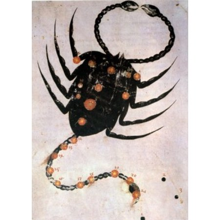 Scorpio Or Scorpion Signs Of The Zodiac By Artist Unknown  From Atlas Celeste De Strabov  Canvas Art     18 X 24