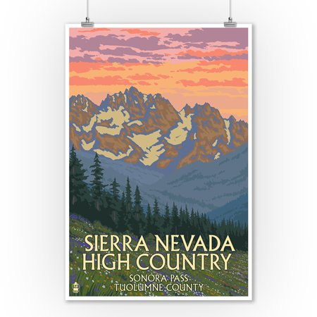 Sonora Spring - Sonora Pass, Tuolumne County - Sierra Nevada High Country - Spring Flowers - Lantern Press Artwork (9x12 Art Print, Wall Decor Travel Poster)