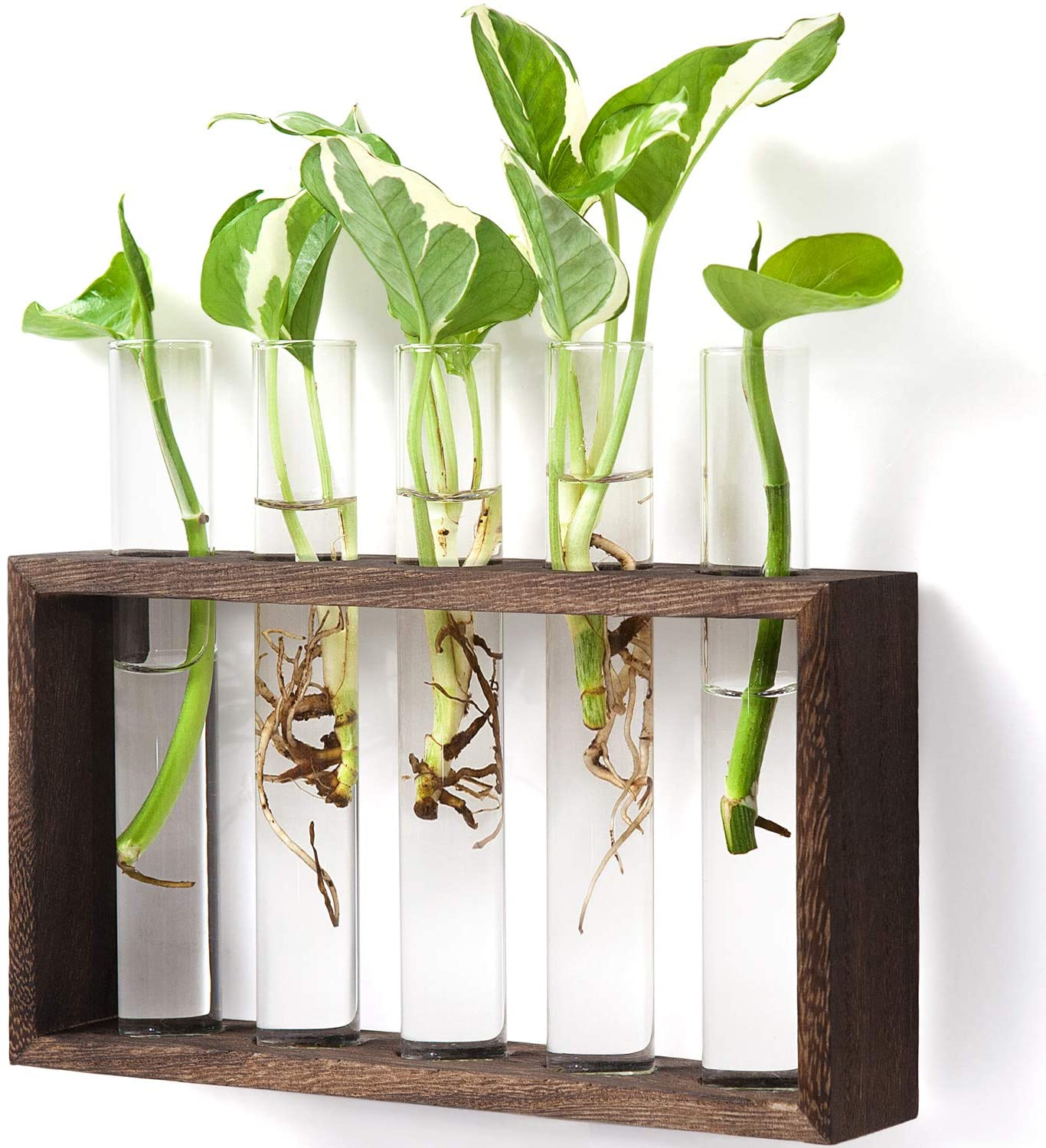 Wooden Propagation Station Hydroponic Tabletop One Vase