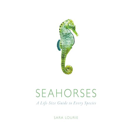 Seahorses : A Life-Size Guide to Every Species