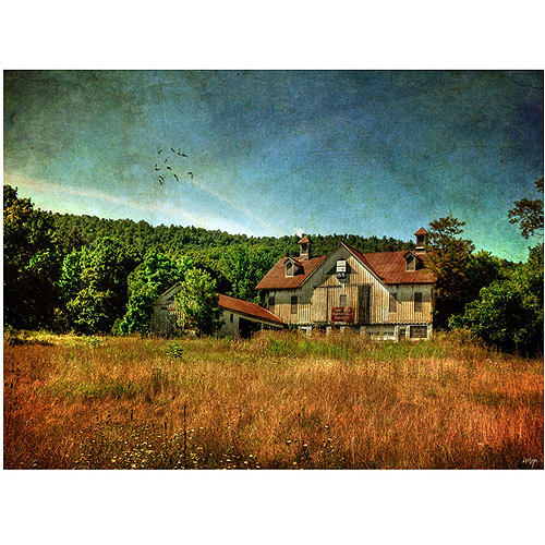 "Trademark Fine Art ""Old Barn in Golden Afternoon Light"" Canvas Wall Art by Lois Bryan"