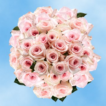 Globalrose 200 Mother S Day Flowers Special Offers Pink Roses